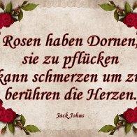 rose rahmen3