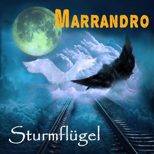 """""""Sturmflügel"""" Flügel, aus Träumen gemacht, getragen voll stürmischer Fantasie"""