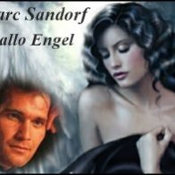 Hallo Engel MARC SANDORF